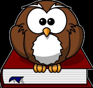 owl-47526_640